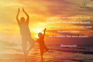 experiences-dhammapada